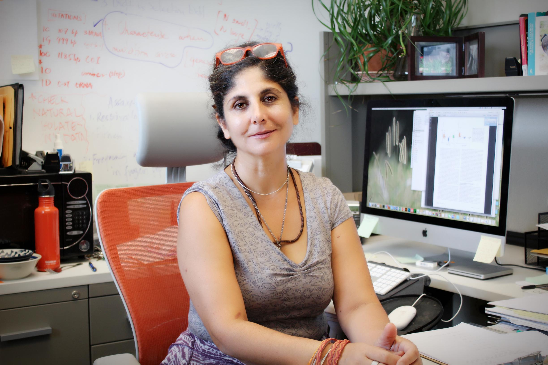 Vaishali Katju, PhD