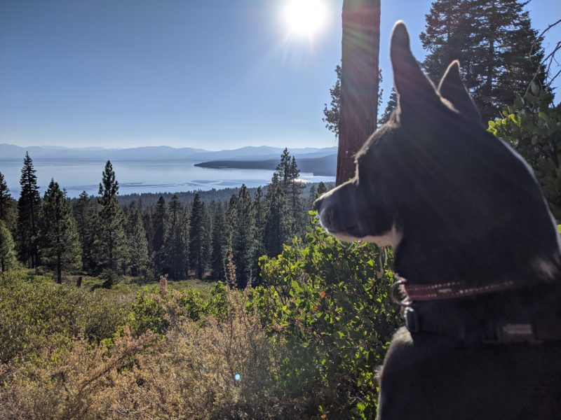 Scout – it's a view of Lake Tahoe from the top of a hike.